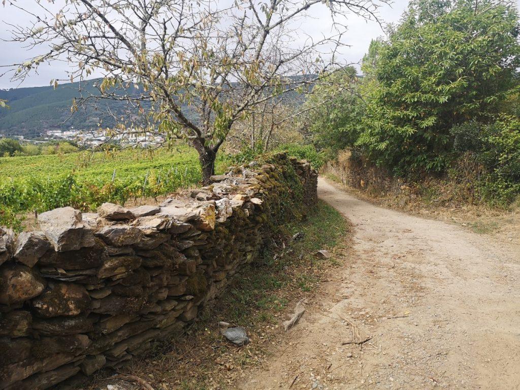 A RÚA – QUIROGA (28 KM)
